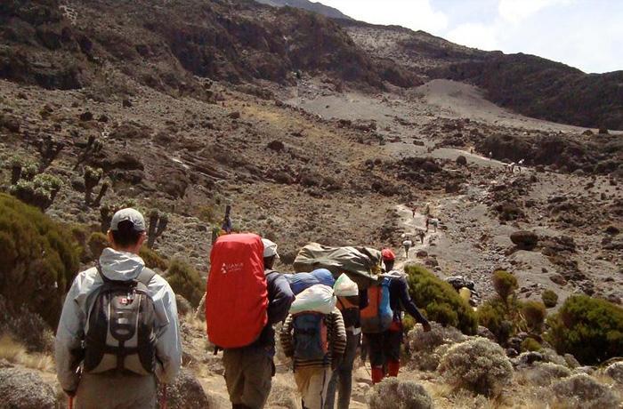 One World Trips - Active Tours - Hiking and Trekking - Kilimanjaro trekking