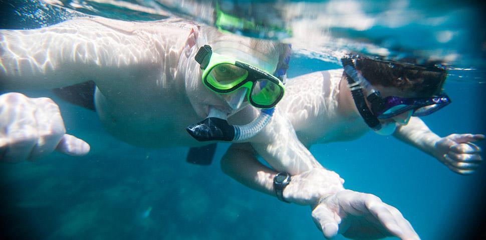 One World Trips - Marine Tours - Galapagos Cruises