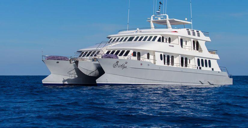 One World Trips - Galapagos - 4 days cruising East, South & Central islands aboard Alia