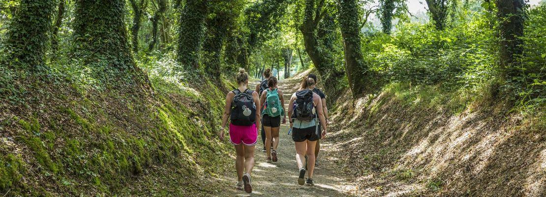 One World Trips - Walk the Camino de Santiago