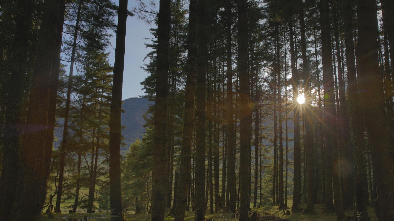 Wonders of Bhutan